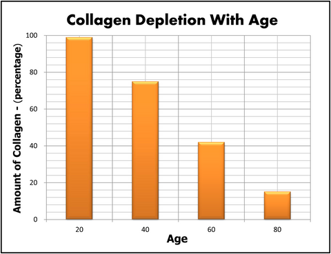 Collagen Production