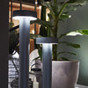 Divino Outdoor Light