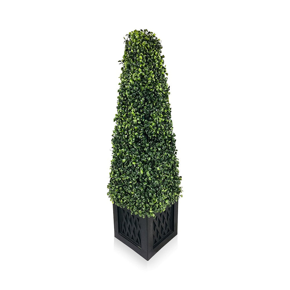 Boxwood Tower