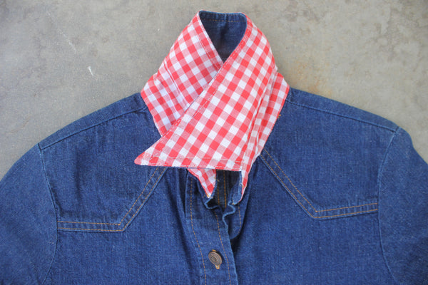 "Vintage Levi's Big E ""Red Gingham Collar"" Denim Dress - La Lovely Vintage"