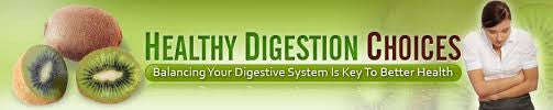 Digestive Reset Program.....Heal Your Gut And Heal Your Health