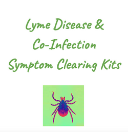 Lyme & Co-Infections Clearing Kit