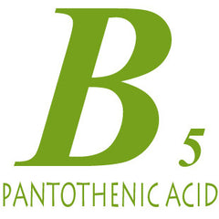 Vitamin B5 For Adrenals