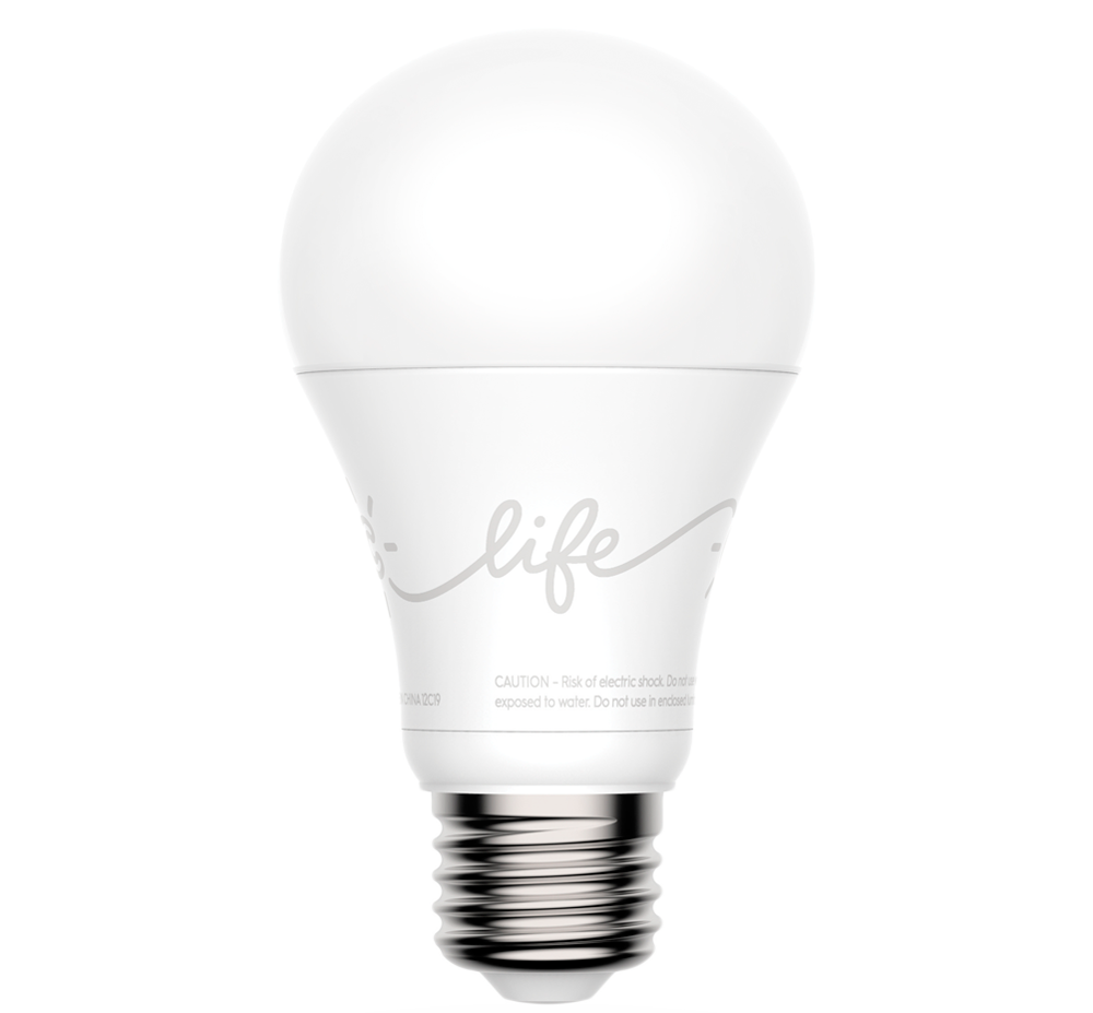 the bulb sustainable for swirly which is living led vs light your bulbs cfl home best lightbulbs