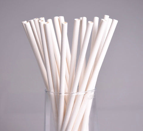 White Paper Straws (100 per lot)