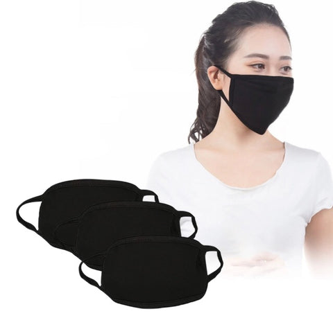 1 x PM2.5 Face Mask