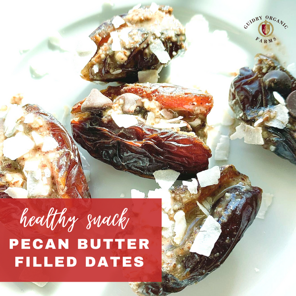 Pecan Butter Stuffed Dates