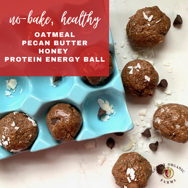 Healthy Chocolate Pecan Butter Protein Energy Balls