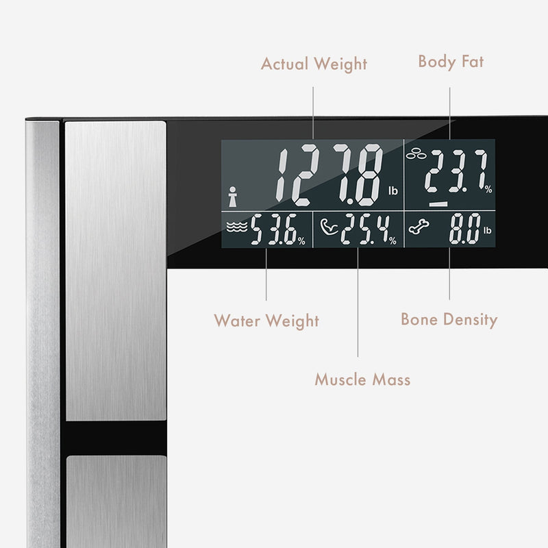 Body Analyzer1 | Digital Scale & Body Analyzer