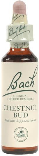 Bach Flower Remedy Chestnut Bud