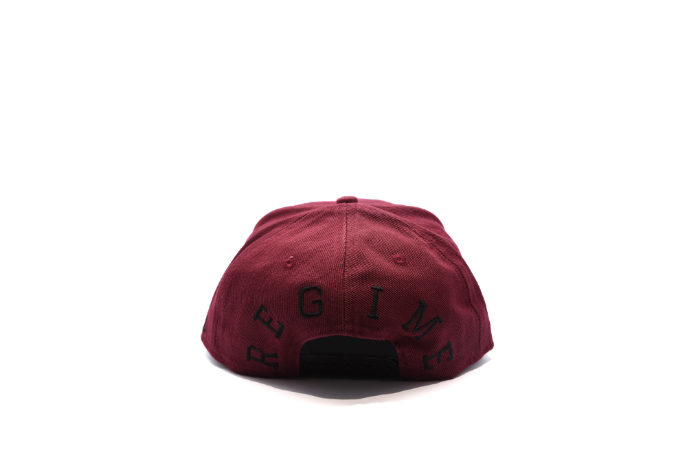 Civil Regime Denim Thrash Snapback