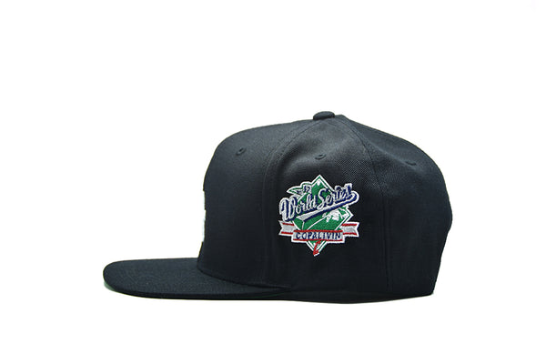 COPALIVIN World Series FLA Snapback