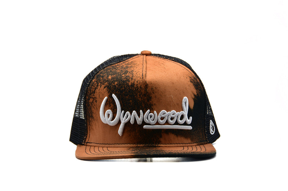 Dungeon Forward Wysney World Hat