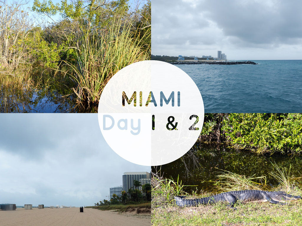 Miami Day 1 and 2: Miami beach + Everglades // Miami jours 1 et 2: Miami Beach et Everglades
