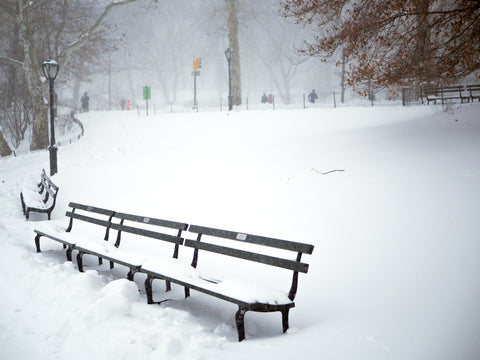 benches-snow-central-park-joans-storm