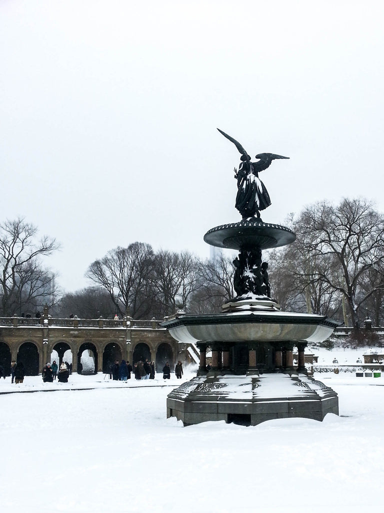 bethesda-fountain-snow