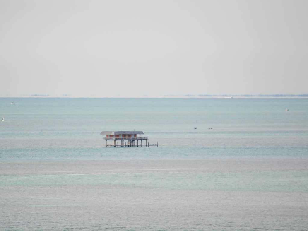 miami-stilt- house.jpg