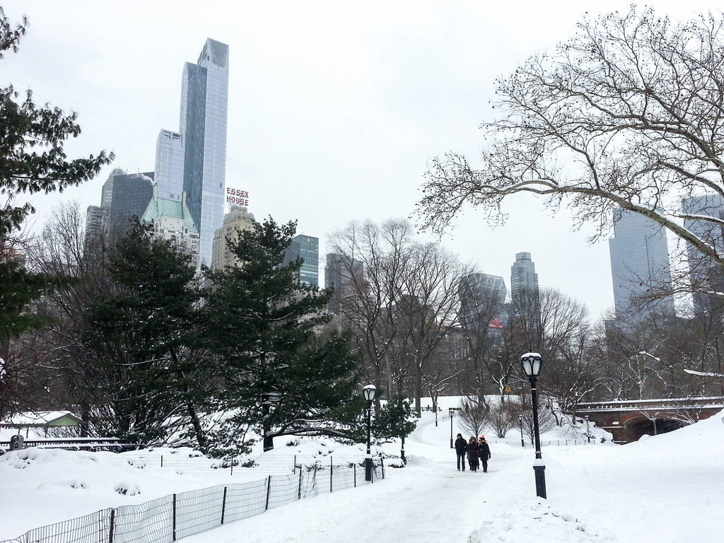 new-york-neige-central-park