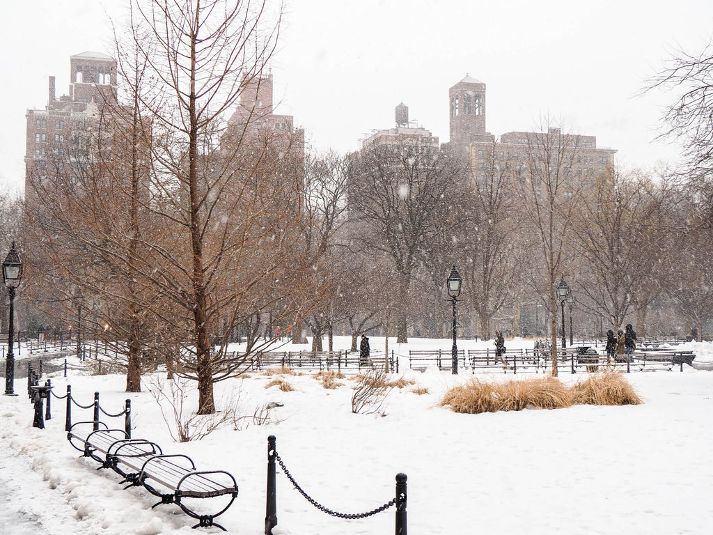 new-york-washington-square-park-neige