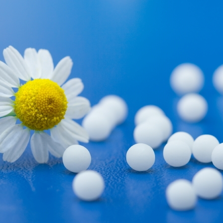 Homeopathy: an Introduction