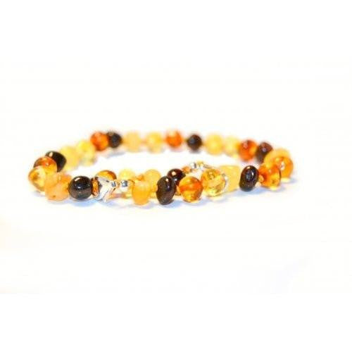 (10in) Certified Baltic Amber Adjustable Bracelet or Anklet - Silver Lobster Clasp - MultiColored -  - The Art of Cure