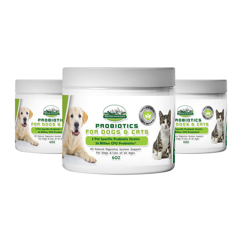 Pet-Specific Probiotics w Prebiotic Inulin for Dogs and Cats| Improves digestion | Builds immune system| Supports Optimum Pet health All Natural by GR8 Pitkin Pet Products