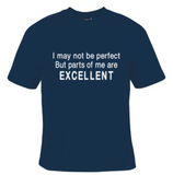 I May Not Be Perfect But Parts of Me Are Excellent T-Shirt Men's - Life Rush Apparel