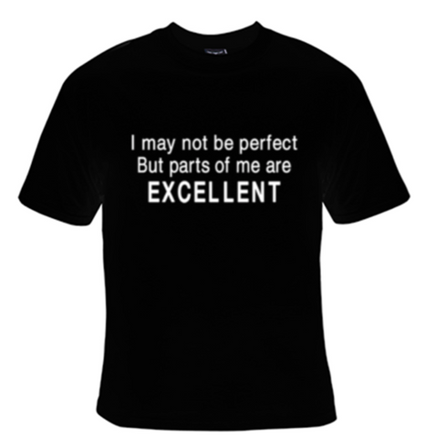 I May Not Be Perfect But Parts of Me Are Excellent T-Shirt Women's - Life Rush Apparel