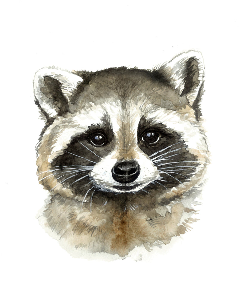 Wild Canary Studio Raccoon Watercolour Print | kids at home