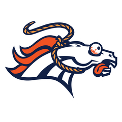 Broncos Funny Hilarious Football Logo