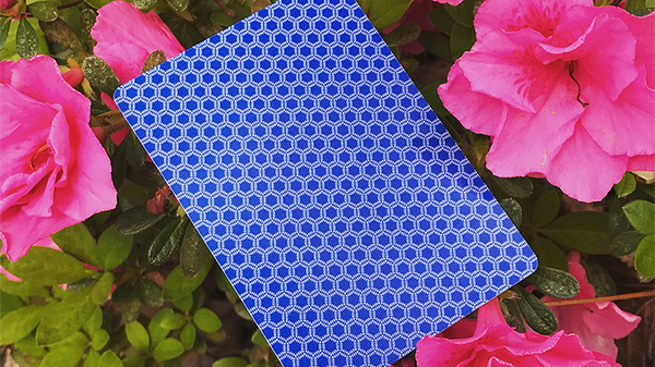Honeybee Elite Edition (Blue) Playing Cards - Got Magic?