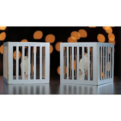Amazing Cages from Frame by Tora Magic - Trick - Got Magic?