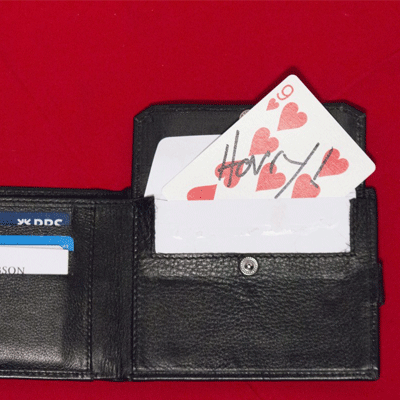 HOW Wallet by Harry Robson - Trick - Got Magic?