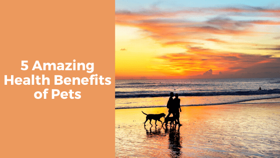 5 Amazing Health Benefits of Pets