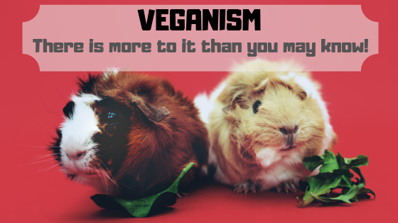 🥦Veganism: It's Not Just A Change In Food, But Clothes, Cosmetics & Perfumes!