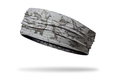 light khaki brown headband with outlines of dinosaurs in brown and names inside in white