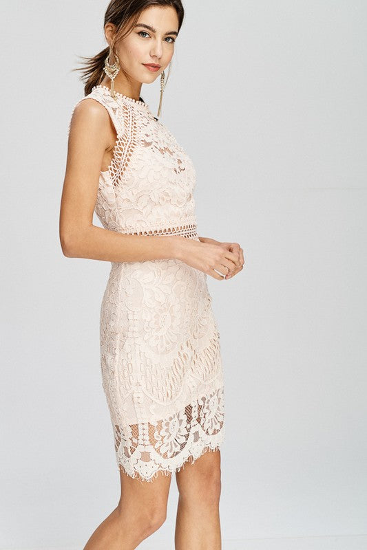 Wedding Guest Illusion Lace Mock-Neck Sheath Dress