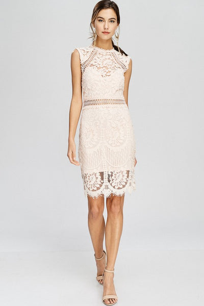 Blush mock neck lace dress