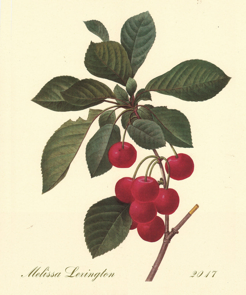Cherry Branch - Notebook