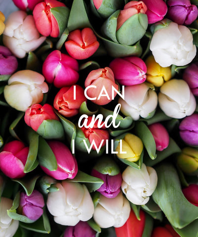 Cover - I Can and I Will