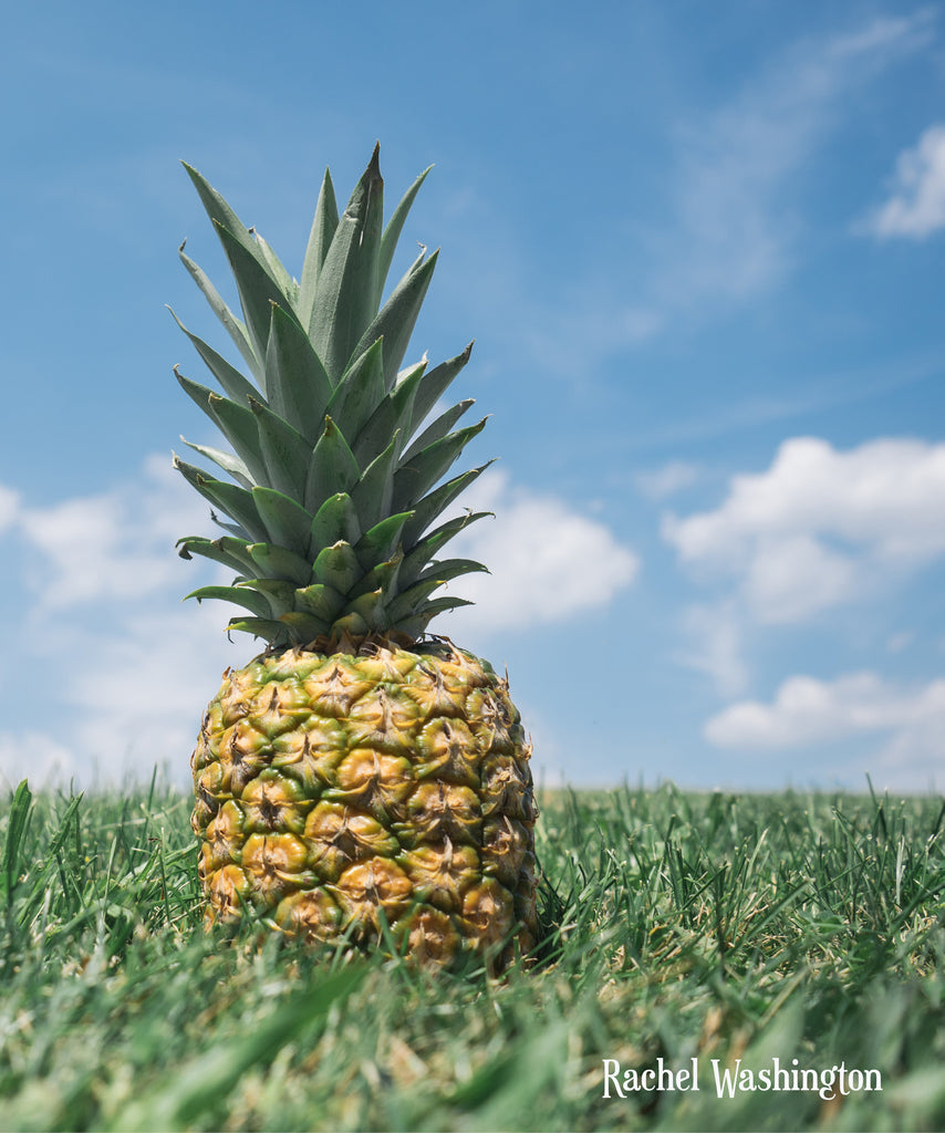Cover - Pineapple