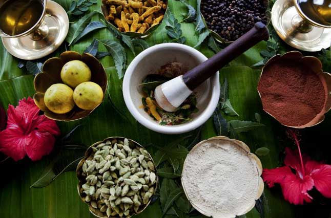 Your Introductory Guide to Ayurvedic Herbal Medicine