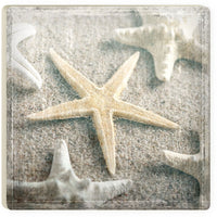 Absorbent Coaster - Muted starfish
