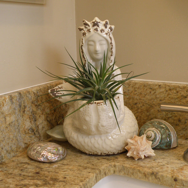 Mermaid planter, toothbrush holder statue in beige