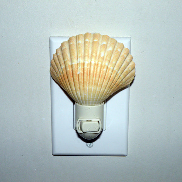 Nightlight - shell