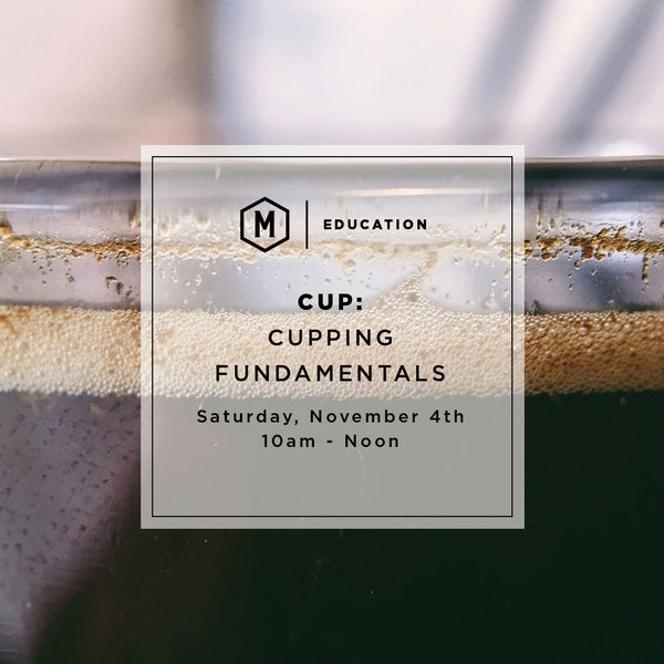 CUP: Cupping Fundamentals