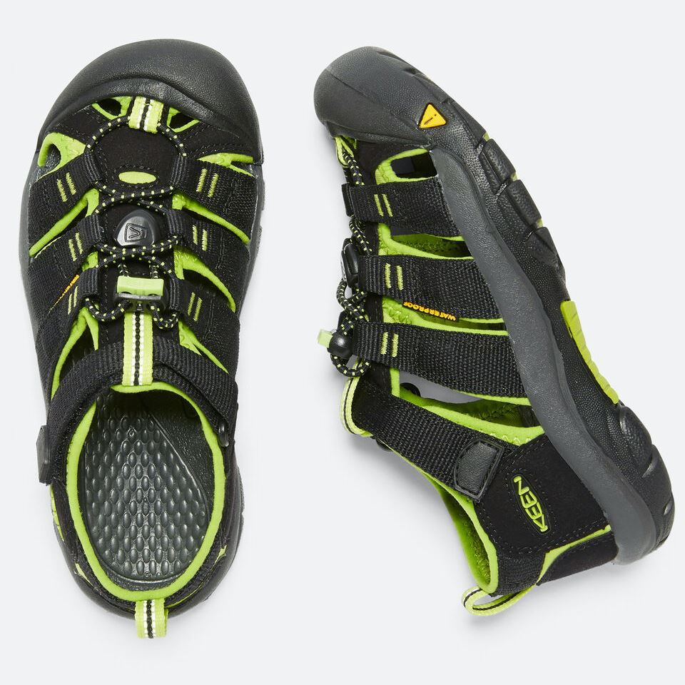 Keen Kids, Newport H2, TODDLER Medium Fit, Hydrophobic Mesh, Black/Lime Green Sandals Keen Black/Lime Green 12