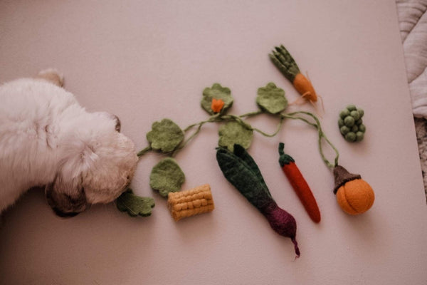 Small felt vegetable box