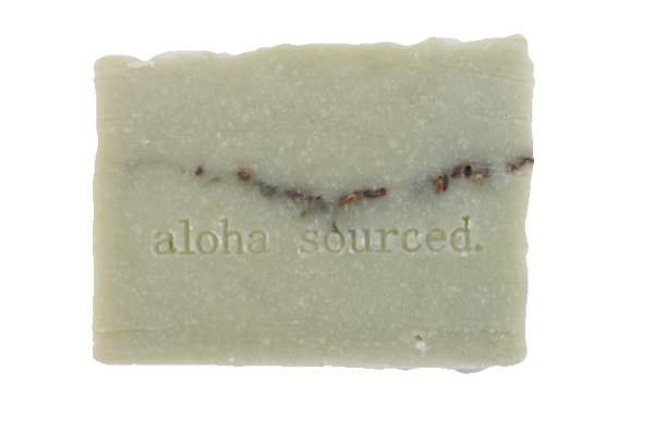 Winter Spruce Bamboo Soap