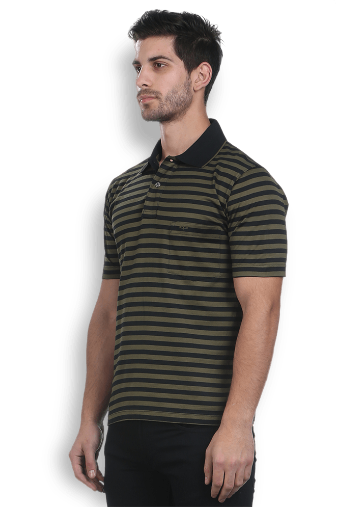 ColorPlus Green Regular Fit T-Shirt
